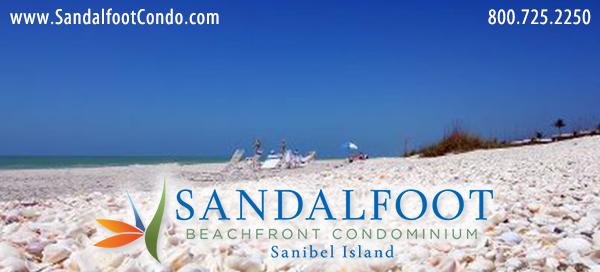 Sandalfoot Shells