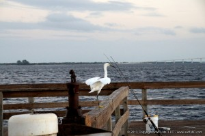 Fishing Pier on Sanibel