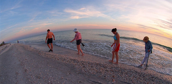 the_sanibel_stoop