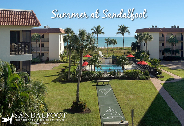 Summer at Sandalfoot 2016