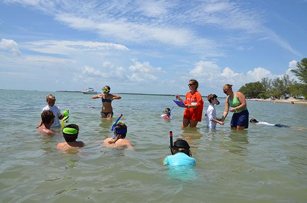 Sanibel Sea School Summer Programs