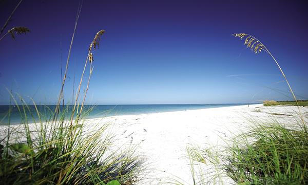 Sanibel Beach SWFL