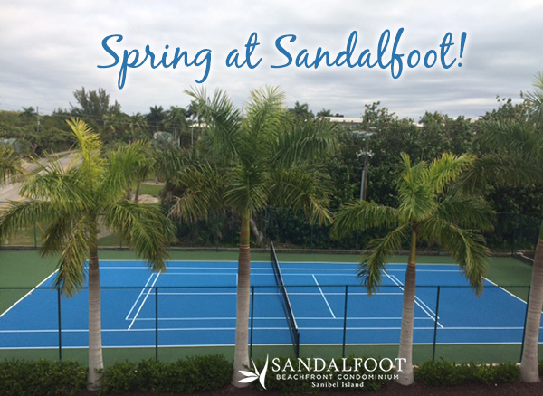 Spring at Sandalfoot