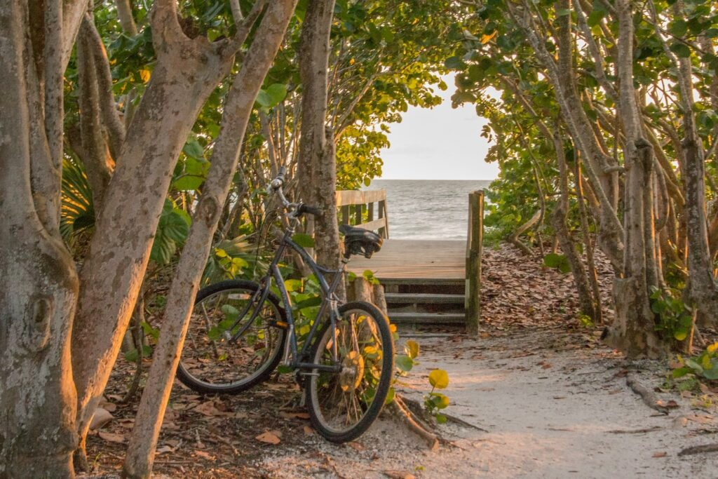 bicycle next to beach entrance