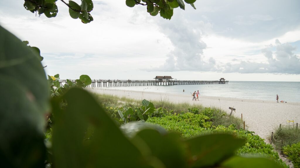 view of the pier on sanibel island